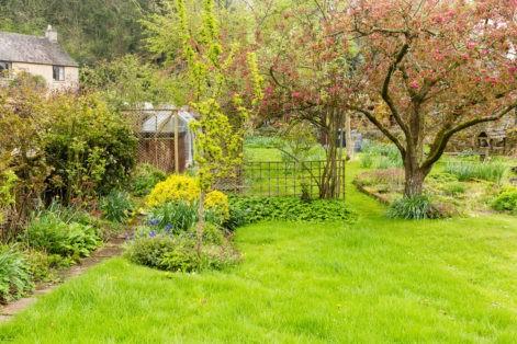 Nortons - Rear Garden Area